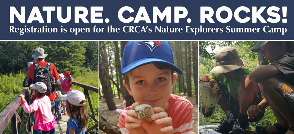 Nature Camp Registration is now open